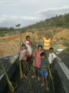 Children planting weeds in dwat for sewage treatment